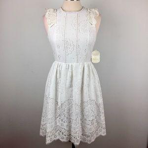 Altar'd State Floral Lace Alvida Fit & Flare Dress